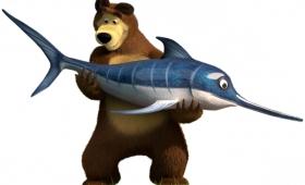 Медведь или Акула?